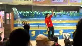 沖縄玉泉洞ハブショーの様子です。マングースとウミヘビの競泳ショーの...