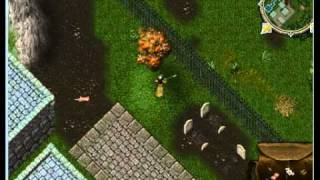 Ultima Online - Part 3