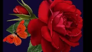 Los Bondadosos - MIX Romantico