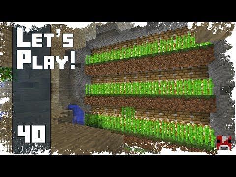 Minecraft Timelapse - SURVIVAL LET'S PLAY - Ep. 40 -  SUGARCANE FARM! (WORLD DOWNLOAD)