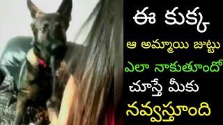 Funny Animals Playing Video || Neha Iyer