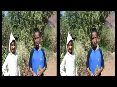humour maroc jeunes berber essai de parler francais fou rire youtube. Black Bedroom Furniture Sets. Home Design Ideas