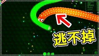 【貪吃蛇】自殺式玩法! 看到敵人就貼上去!! ▶ Wormax.io