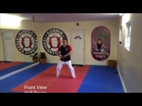 Feeding Crane Kung Fu Angle Fist Form 2015