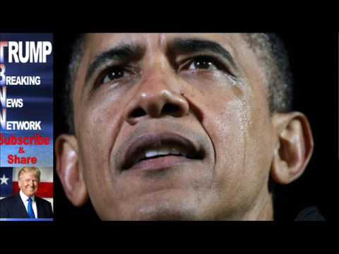 Study Obama Lost 2008 Election – 5 7 Million Illegals Voted For Him
