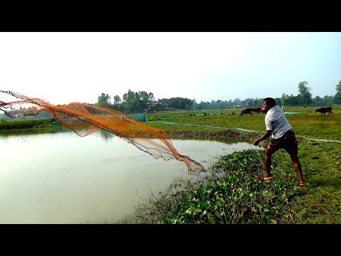 Cast Net Fishing।Traditional Cast Net Fishing In River। Fishing With A Cast Net (part-576)