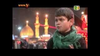 نشيد زينب في الطفوف تنادي - محمد حسين خليل - قناة طه