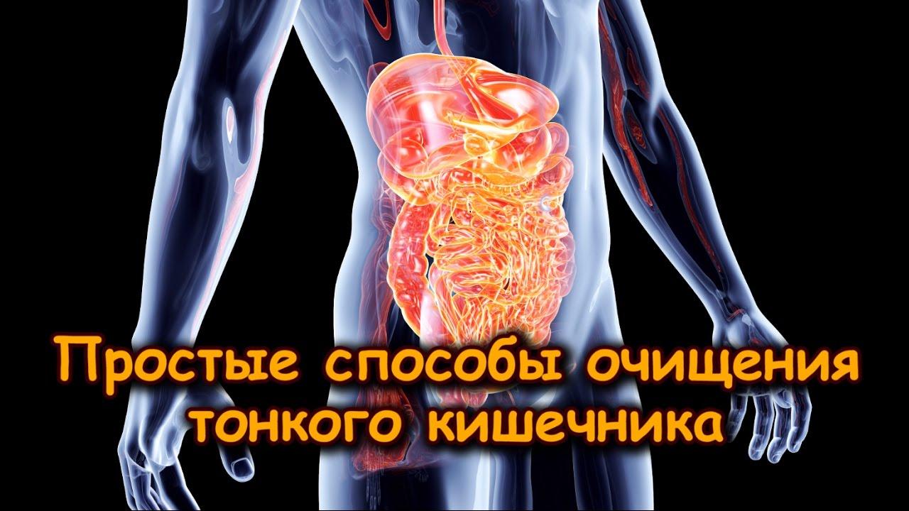 способы очищения организма от паразитов