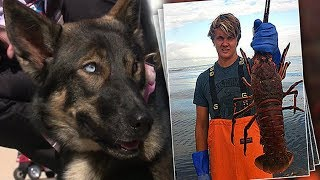 Young Fisherman Whose Dog Fell Overboard In The Ocean Gets Strange Phone Call Weeks Later