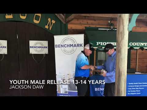 3DAAA 2017 Benchmark Shootout Pioneer Country Tweed