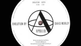 David Morley - Evolution