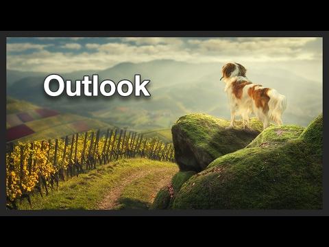 Dog Outlook   Photo Manipulation   Photoshop - Speed Edit