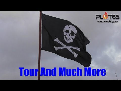 TOUR AND MUCH MORE
