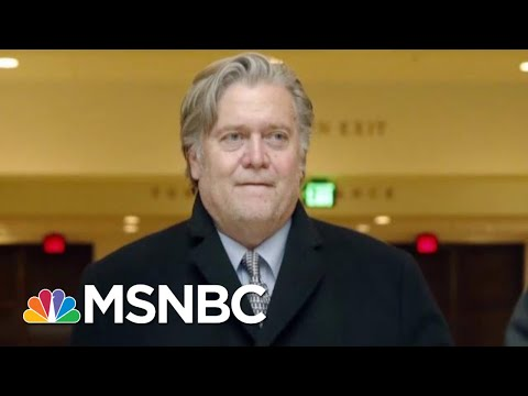 Steve Bannon: Roger Stone Was 'Access Point' To WikiLeaks | The Last Word | MSNBC
