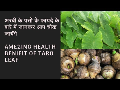 Amezing Health Benifit Of Taro Leaf