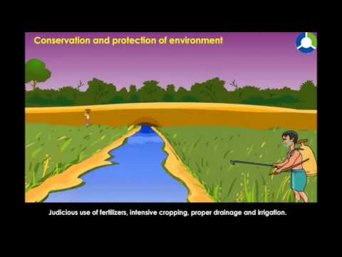 Conservation and Protection of Environment