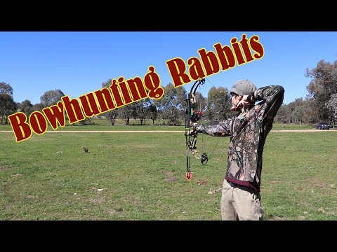 Hunting Rabbits With A Compound Bow