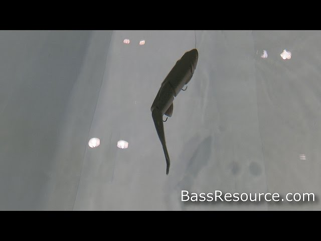 Savage Gear Line Thru Trout SwimBait | Bass Fishing