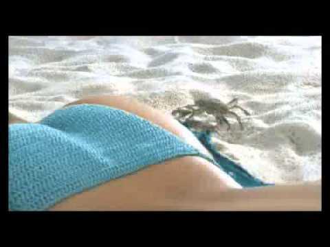 Spannen Am Strand