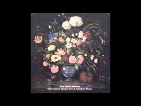 The Wild Swans - English Electric Lightning