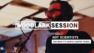 WOODLARK SESSION #2 [LIVE] - Not Scientists - For What's It's Worth (cover)