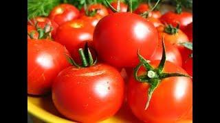 Квашеные помидоры! Самый простой рецепт!