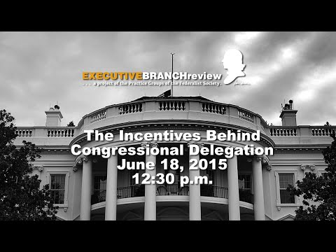 The Incentives Behind Congressional Delegation