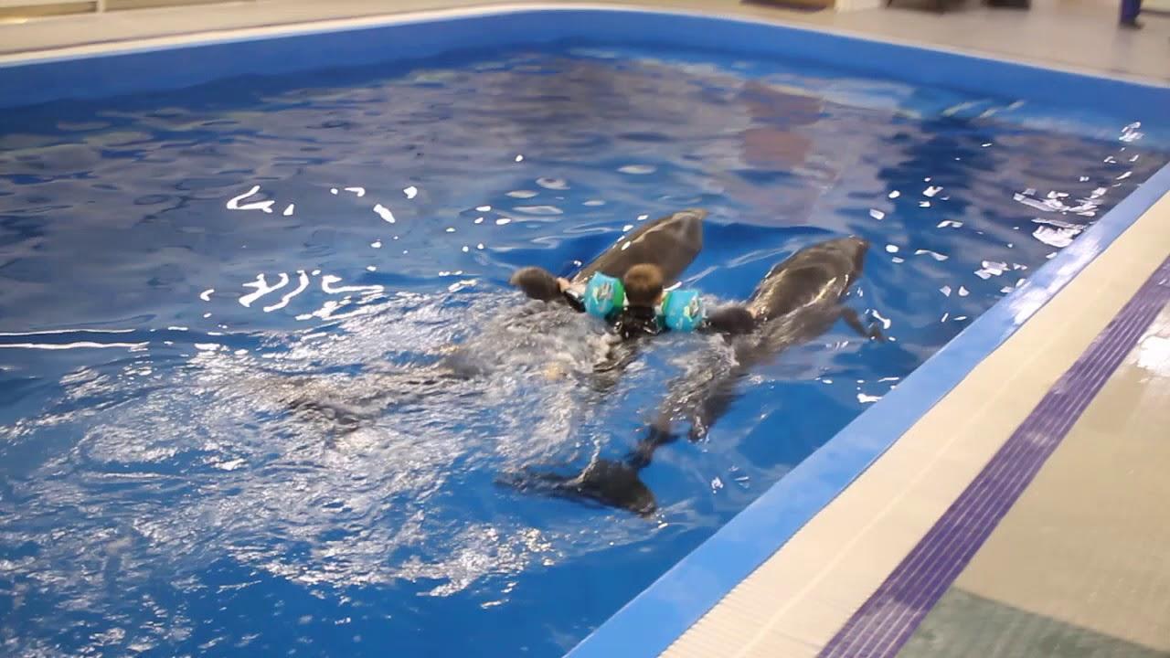Дельфинотерапия в Москвариуме! 2 дельфина счастье в квадрате!!!