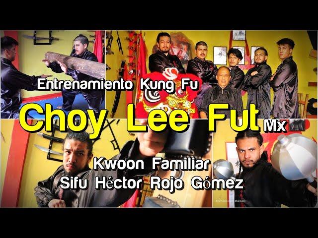 Entrenamiento Kung Fu Choy Lee Fut México - Kwoon Familiar Sifu Héctor Rojo