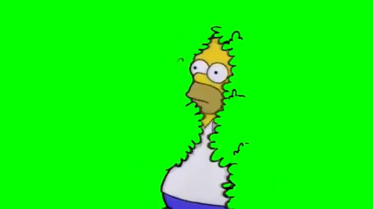 Homer disappears into bushes (GREENSCREEN) - YouTube