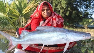 Bengali Aar Mach Vuna Recipe Village Style Cooking Easy & Spicy Ayer Fish Curry Village Food