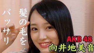 みなさま、ご覧いただきありがとうございます。 AKB48向井地美音さん。ロングヘアの印象が強く、最近は胸くらいまで伸びていましたが、15センチほどバッサリとカット。