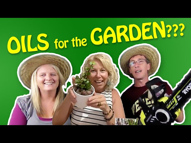 Let's Talk About... Gardening