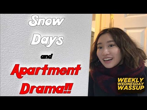 Record Snow in Tokyo!!! Still problems being a foreigner and getting an Apartment in TOKYO!! (VLOG)