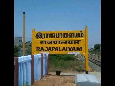 We r Rajapalayam bad boys
