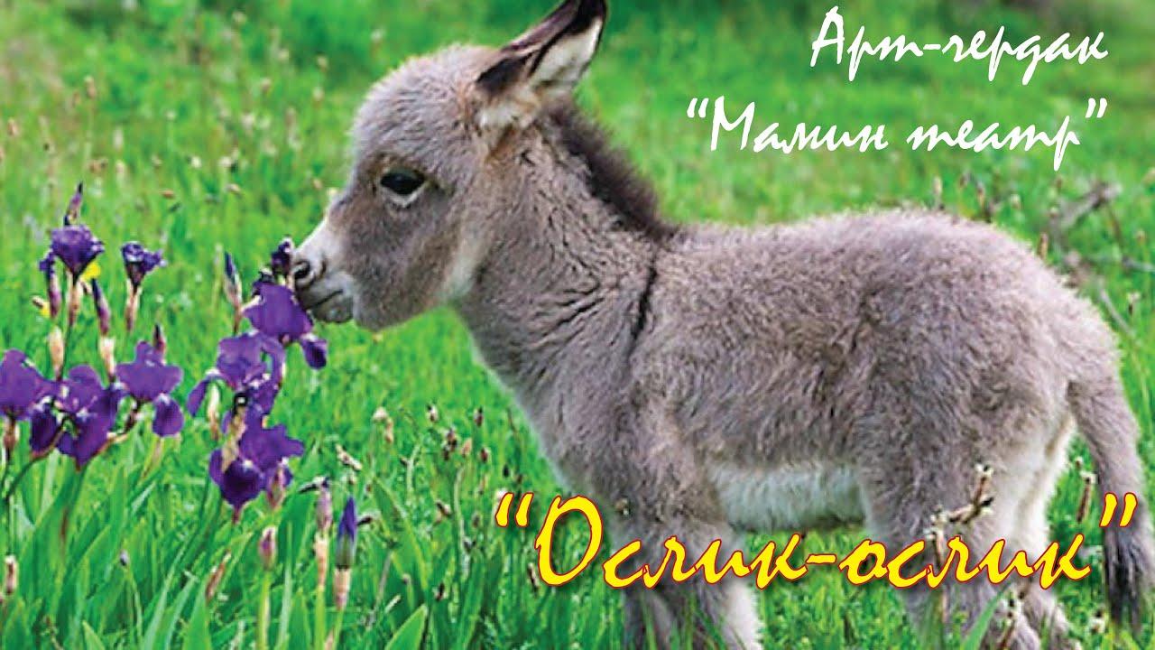 """Трансляция спектакля """"Ослик-ослик"""" арт-чердака """"Мамин театр"""" состоится 11 мая в 18:00"""