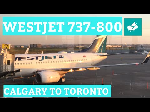 TRIP REPORT - WestJet (737-800), Calgary to Toronto