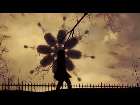 Armin van Buuren - Beautiful Life (Mikkas Remix) [Music Video] [HD]