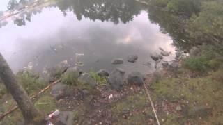 рыбалка Ленинградской области город Приозерск 1 часть