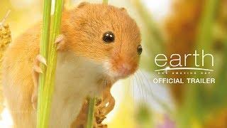 Earth: One Amazing Day หนึ่งวันมหัศจรรย์สัตว์โลก - Official Trailer [ ตัวอย่าง พากย์ไทย ]
