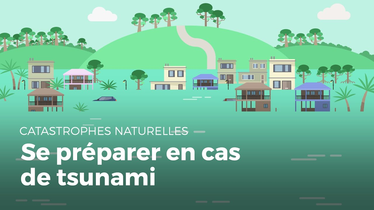 Se pr parer face un tsunami catastrophe naturelle youtube - Comment se debarrasser des limaces ...