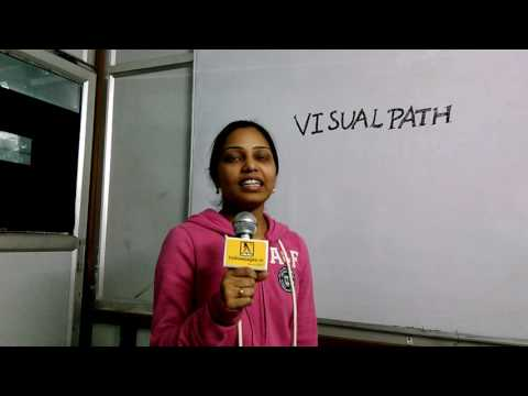 Visualpath Training & Consulting in Ameerpet, Hyderabad | Yellowpages.in