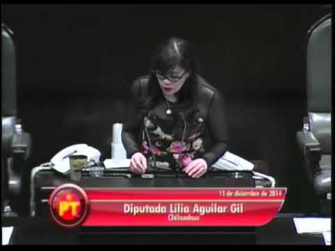 Dip. Lilia Aguilar (PT) - Código Civil Federal