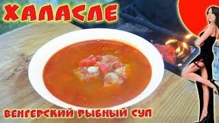 Халасле. Венгерский рыбный суп. Готовим на природе.