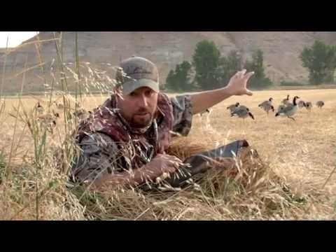Early Goose Season Hunting In Oregon And Nevada Duck Hunt