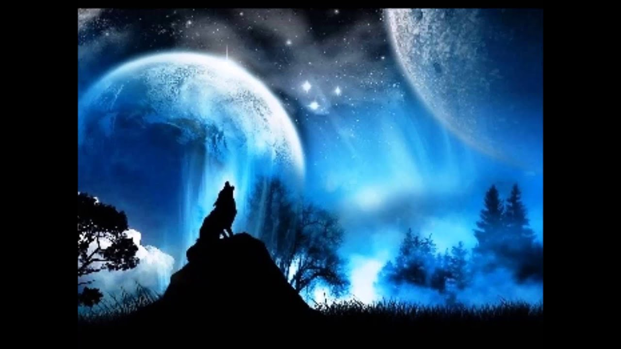 Lone Wolf Wallpaper Quotes Meditation Spirit Of The Lone Wolf Youtube