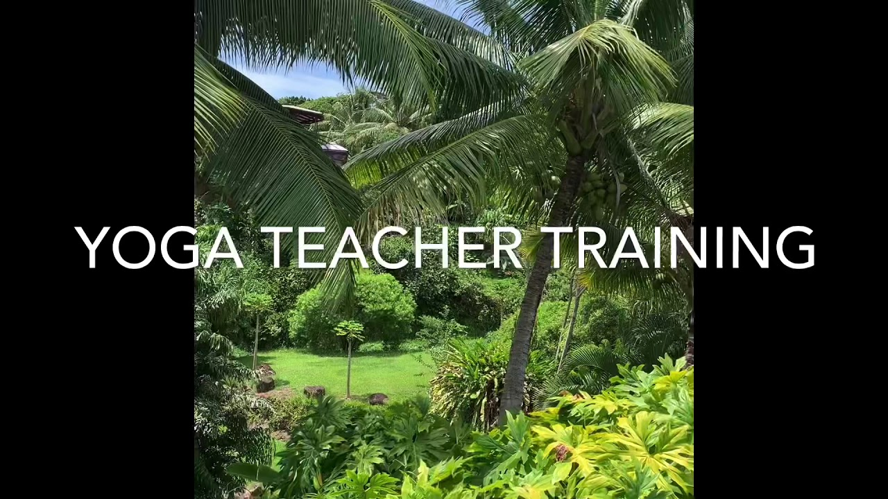 Yoga Teacher Training On Maui With Truly Helpful Youtube