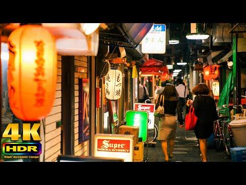 【4K HDR】Oimachi Night
