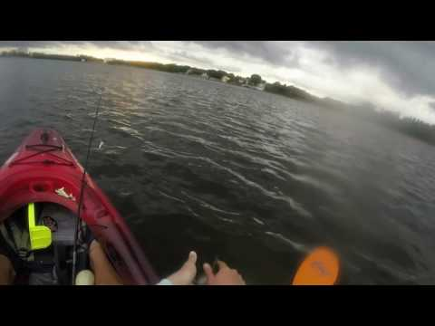 Crazy biting during the storm