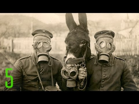 5 Most Haunting Photos of World War I